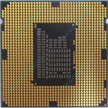 Процессор Intel Celeron G540 (2x2.5GHz /L3 2048kb) SR05J s.1155 (Новокузнецк)