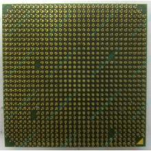 Процессор AMD Sempron 3000+ (1.6GHz) SDA3000IAA3CN s.AM2 (Новокузнецк)